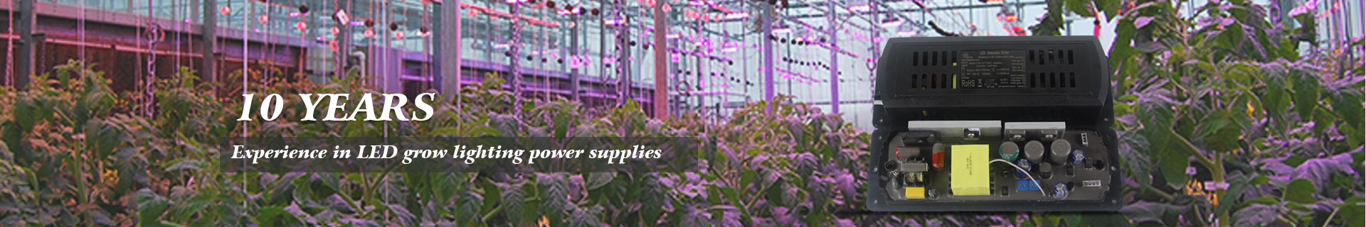 10 Years Experience In Led Grow Lignting Power Supplies