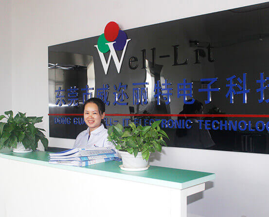 Dongguan Well-Lit Electronic Technology Co., Ltd.